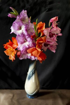Bouquet from beautiful and bright colour of the gladiolus in vase on dark background Zdjęcie Seryjne