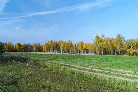Autumn landscape in rural terrain at solar day on background blue sky Zdjęcie Seryjne