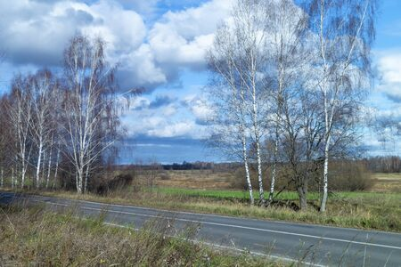 Road near by birch at autumn length of time on background blue sky with cloud Zdjęcie Seryjne