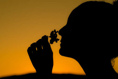 silhouette of a girl with her hair up, smelling a flower on an orange background Imagens