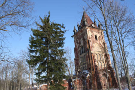 gothic tower in the forest