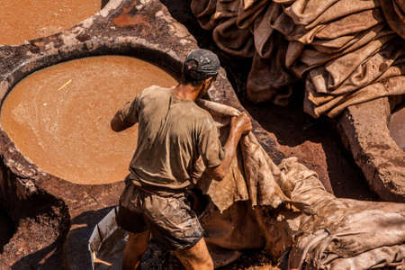 fes: Man at work in a tannery in Fez, Morocco