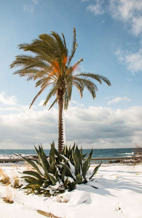 Ionian coast after a exceptional snowfall.  Jan 2017, Salento, Italy. Stock Photo