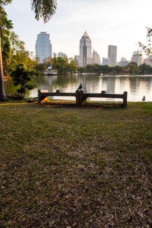 Bench at Lumpini park, Bangkok, Thailand Imagens
