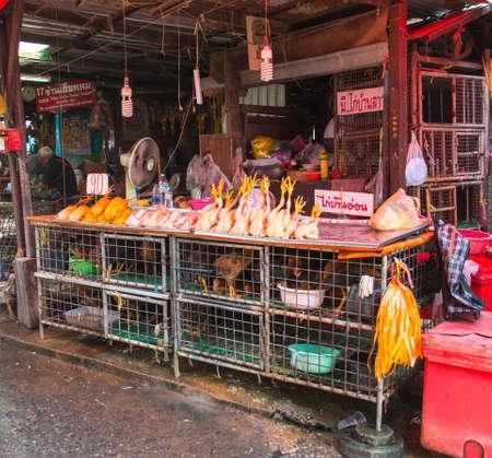 chickens on sale at klong toey market, Bangkok, Thailand