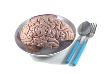 human brain as food with spoon and fork, isolated Stock Photo - 10789335