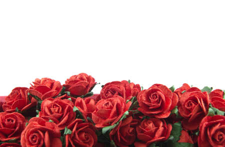Red roses in a bunch isolated on a white background with space for text photo