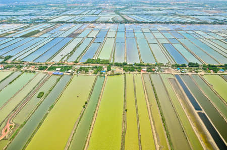 [Image: 21891005-aerial-view-of-rice-field-terra...ailand.jpg]