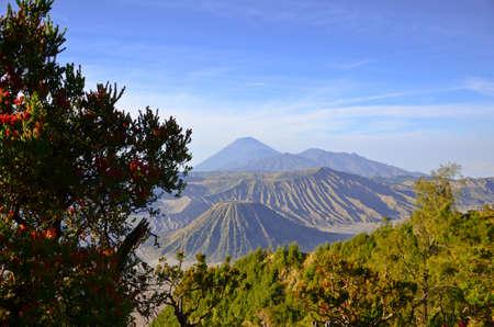 tengger: Bromo volcano at sunrise,Tengger Semeru National Park, East Java, Indonesia Stock Photo