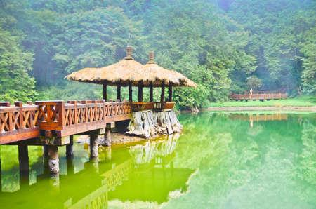 Alishan forest amusement park,Taiwan