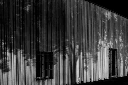 shadow: shadow design