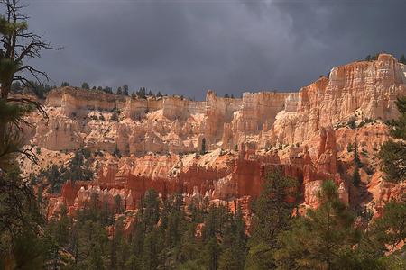 Bryce Canyon, Utah at midday Stok Fotoğraf