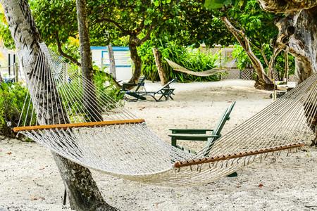 Hammock hanging between two trees on shady beach in British Virgin Islands