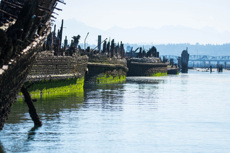 Abandoned barges left on shoal in Steamboat Slough, Everett, WA