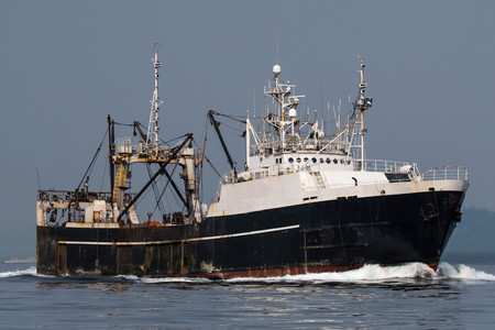 F/T Alaska Spirit transitting Shilshole Bay on the way to Seattle. Standard-Bild - 98772086