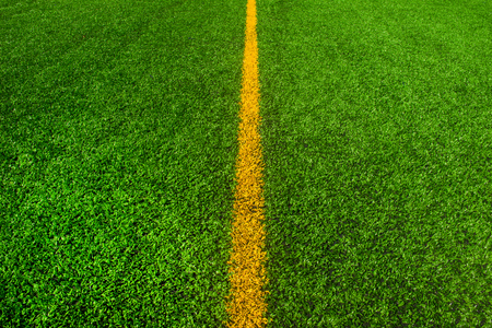 Texture of the herb cover sports in tennis, golf, baseball, field hockey, football, cricket, rugby, soccer