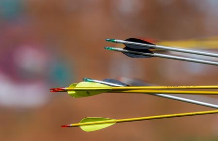 archery arrows on a blur background