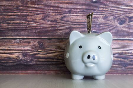 Pig money box on wooden wall background