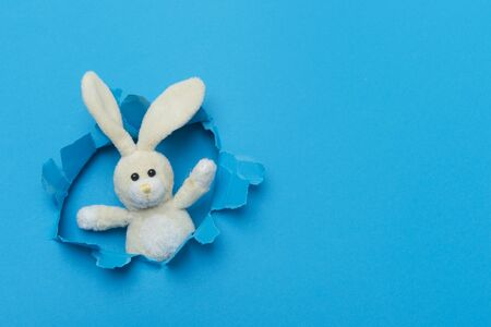 Toy Bunny In Paper cut hole. World Autism Awareness