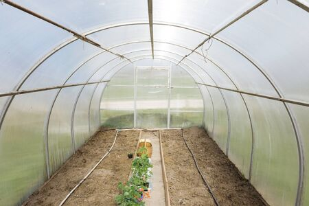 Empty greenhouse prepared for cultivation of plants
