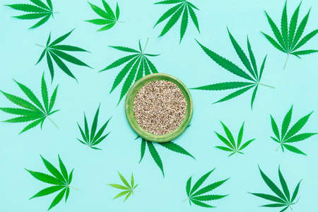 Green cannabis leaf and seeds on plate on mint color background. Vegetarian healthy food