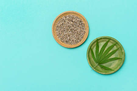 Green marijuana leaf and seeds on plate on mint color background. Medical marijuana. Concept of herbal alternative medicine, pharmaceptical industry, cbd oil 版權商用圖片