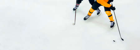 Professional ice hockey player on the ice. Team sport concept