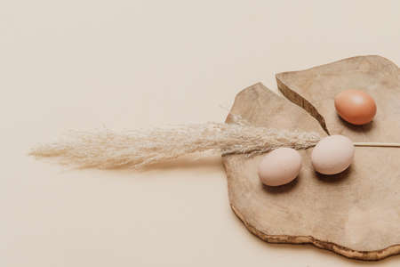 Brown dried pampas grass and eggs on natural beige background. Zero waste easter concept. Eco friendly lifestyle, copy space 免版税图像