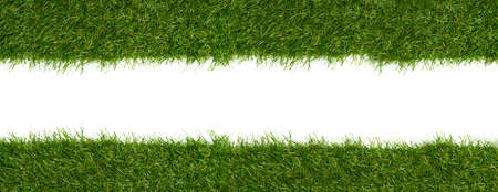 Green grass borders for decoration and covering on white background