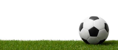 Soccer ball on green grass.  Professional sport concept. Horizontal sport poster, greeting cards, headers, website