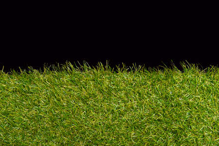 Green grass borders for decoration and covering on black background