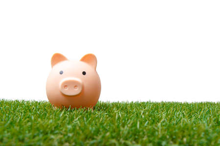 Coin bank sitting on grass with copy space