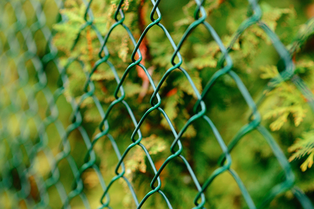 perspective grid: fence with metal grid in perspective wonderful autumn day Stock Photo