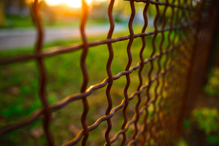 fence with metal grid in perspective, background Stock Photo