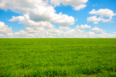 Green grass and blue sky with white clouds,background