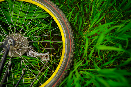 The rear wheel of a bicycle lying on green grass