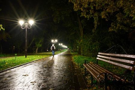 Lampade Park Lanterne notte: una vista di un vicolo passerella, via in un parco con alberi e cielo scuro come sfondo in una sera d'estate. Archivio Fotografico - 76661039