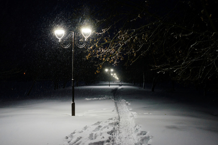 snowlandscape: Winter alley in park and shining lanterns.