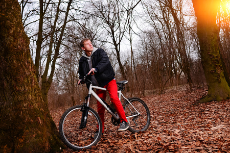 mtb: Cyclist Riding the Bike on a Trail in Summer Forest. Stock Photo