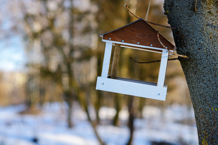 bird feeders. tree house for the birds, cheerful apartment.