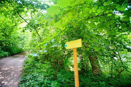 guidepost: yellow arrow wooden sign showing to the left with the road in the woods.
