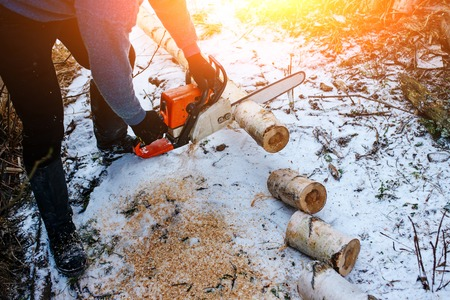 Process of sawing log by chainsaw in the winter . Stock Photo