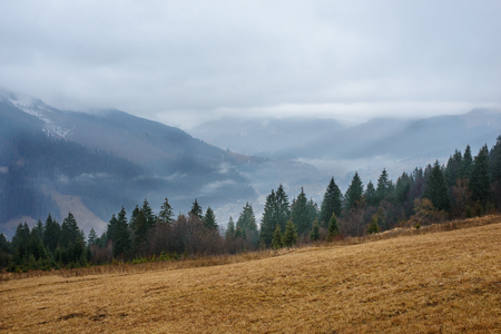 Beautiful view with morning fog in early spring, in Carpathian mountains,