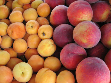 Apricots and peaches for sale in the market