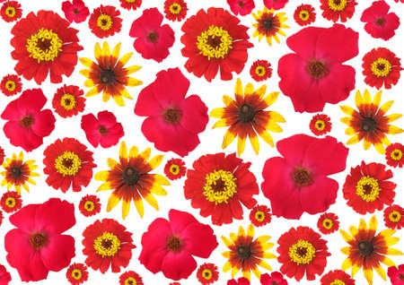 Red flower background Stock Photo