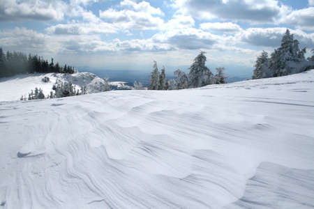 Winter landscape with in Hasmas mountains - Romania Stock Photo - 4850731