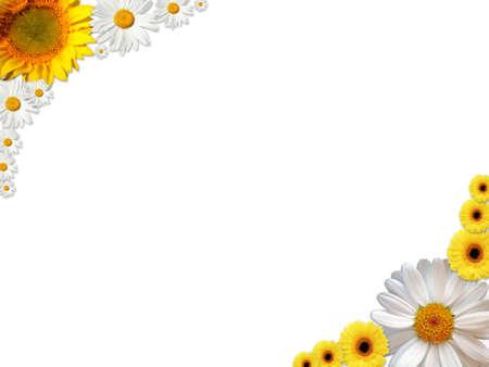 flores en esquina: Un marco de flores de color blancas y naranjas  Foto de archivo
