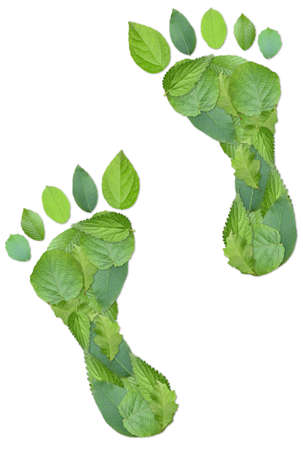 carbon footprint: Green footprints made by real leaves isolated on white Stock Photo