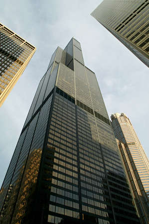the sears tower: sears tower Editorial