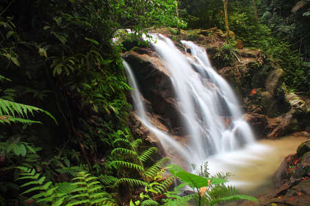 Waterfall in the tropical jungle